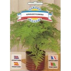 Аспарагуса перистый /0,5 г/ *Garden Elite*