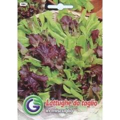 Смесь сортов салатов /6,5 г/ *Galassi sementi*