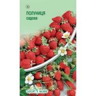 Земляника садовая Регина /0,05 г/ *ЭлитСорт*
