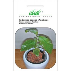 Кофейное дерево Арабика /1 г/ *Профессиональные семена*