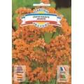 Статице Гвоздичный гигант оранжевый /0,3 г/ *Garden Elite*