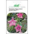 Платикодон Гаваи розовый /0,1 г/ *Профессиональные семена*