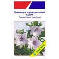 Платикодон крупноцветковый Астра лавандовый двойной /5 семян/ *АгроПак*