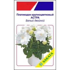 Платикодон крупноцветковый Астра белый двойной /5 семян/ *АгроПак*