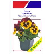 Виола Динамит красная с желтым /10 семян/ *АгроПак*