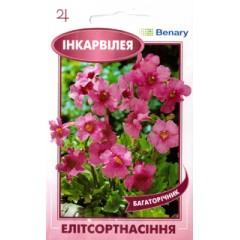 Инкарвиллея розовая /10 семян/ *ЭлитСорт*