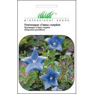 Платикодон Гаваи голубой /0,1 г/ *Профессиональные семена*