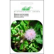 Мимоза стеснительная /0,23 г/ *Профессиональные семена*