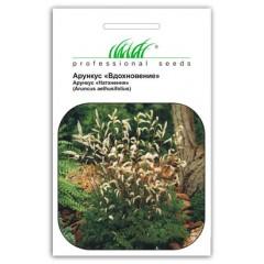 Арункус Вдохновение /30 семян/ *Профессиональные семена*