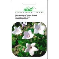 Платикодон Гаваи белый /0,1 г/ *Профессиональные семена*