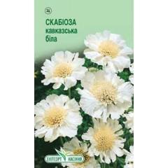 Скабиоза кавказская белая /10 семян/ *ЭлитСорт*