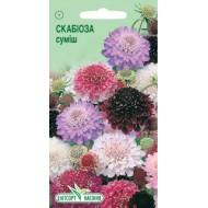 Скабиоза тёмно-пурпурная смесь /10 семян/ *ЭлитСорт*