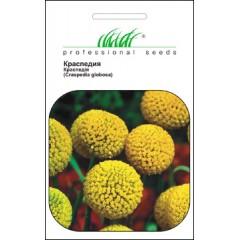 Краспедия /0,05 г/ *Профессиональные семена*