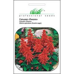 Сальвия низкорослая Пиколо /0,1 г/ *Профессиональные семена*