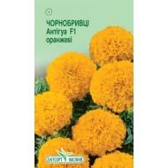 Бархатцы Антигуа F1 оранжевый /5 семян/ *ЭлитСорт*