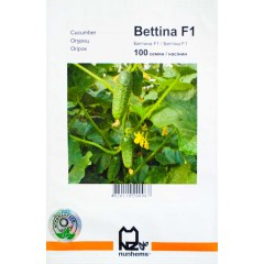 Огурец Бетина F1 /100 семян/ *АгроПак*