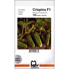 Огурец Криспина F1 /100 семян/ *АгроПак*