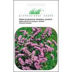 Статице розовый /0,1 г/ *Профессиональные семена*