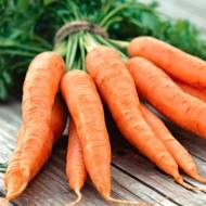 Морковь Флакке /0,5 кг/ *GSN*