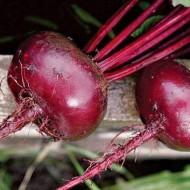 Свекла Бордо /0,5 кг/ *Rem seeds*