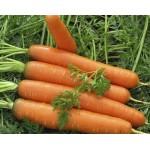 Морковь Красный Великан /0,5 кг/ *Satimex*