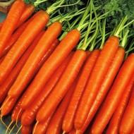 Морковь Нантская /0,5 кг/ *GSN*
