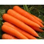 Морковь Осенняя королева /0,5 кг/ *Satimex*