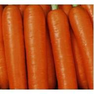 Морковь Красная Боярыня /0,5 кг/ *Satimex*