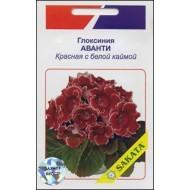 Глоксиния Аванти красная с белой каймой /10 семян/ *АгроПак*