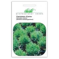 Сантолина Санта /30 семян/ *Профессиональные семена*