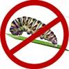 Инсектициды (средства от вредителей)