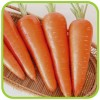 Морковь (профпакет)