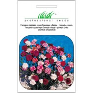Гвоздика садовая Гренадин смесь /0,2 г/ *Профессиональные семена*