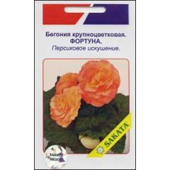 Бегония крупноцветковая Фортуна персиковое искушение /10 семян/ *АгроПак*