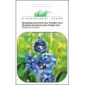 Дельфиниум Пасифик гигант смесь /0,2 г/ *Профессиональные семена*