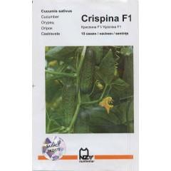 Огурец Криспина F1 /15 семян/ *АгроПак*