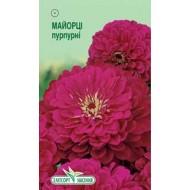 Цинния Пурпурная /0,5 г/ *ЭлитСорт*