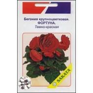Бегония крупноцветковая Фортуна темно-красная /10 семян/ *АгроПак*