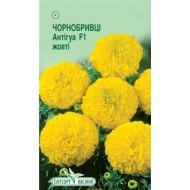 Бархатцы Антигуа F1 жёлтый /5 семян/ *ЭлитСорт*