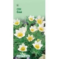 Сон-трава белая /0,05 г/ *ЭлитСорт*
