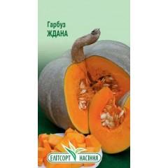 Тыква Ждана /10 семян/ *ЭлитСорт*