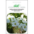 Арабис кавказский белый /0,1 г/ *Профессиональные семена*