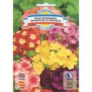 Флокс крупноцветный смесь /0,6 г/ *Garden Elite*