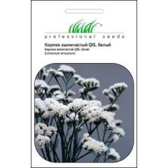 Статице белый /0,1 г/ *Профессиональные семена*