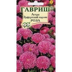 Астра Эрфуртский карлик роза /0,3 г/ *Гавриш*