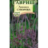Лимониум Суворова розовый /0,01 г/ *Гавриш*