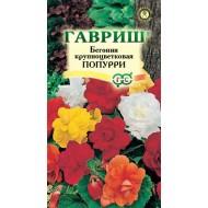 Бегония Попурри крупноцветковая смесь /5 семян/ *Гавриш*