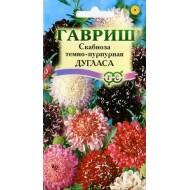 Скабиоза темнопурпурная Дугласа смесь /0,5 г/ *Гавриш*