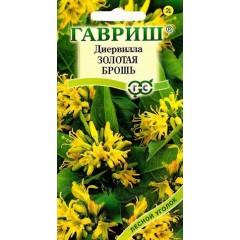 Диервилла сидячецветковая Золотая брошь /5 семян/ *Гавриш*