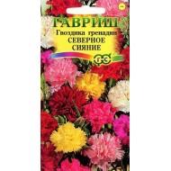 Гвоздика садовая Северное сияние смесь /0,1 г/ *Гавриш*